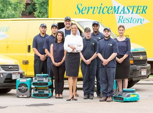ServiceMaster franchise for sale