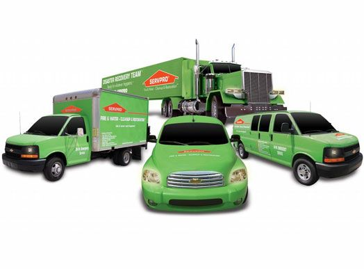 Servpro franchise for sale