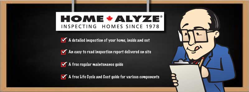 Home Alyze franchise