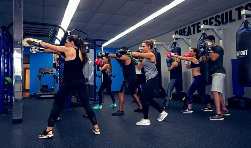Tapout Fitness franchise information