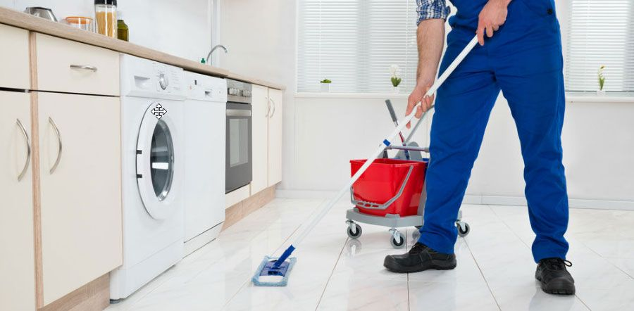 Best 10 Cleaning Franchises