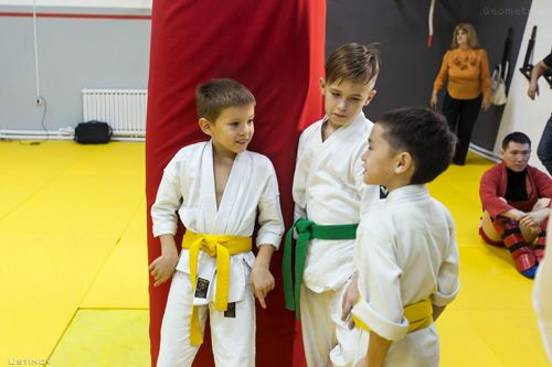 sport for kids business - franchise The Seventh Emperor