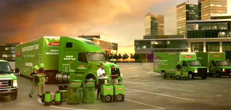 Servpro Cleanup and Restoration Franchise