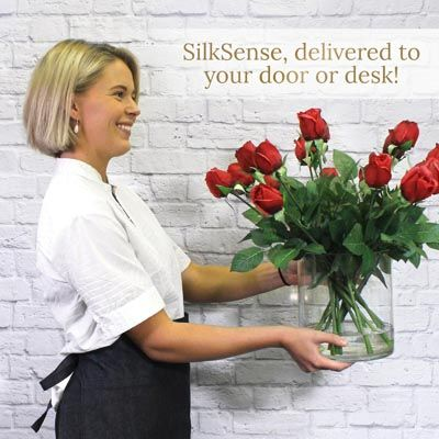Best Franchise to Open - SilkSense
