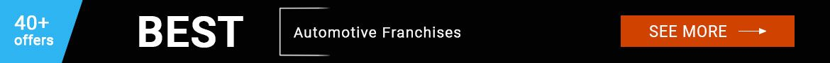 Automotive Franchises
